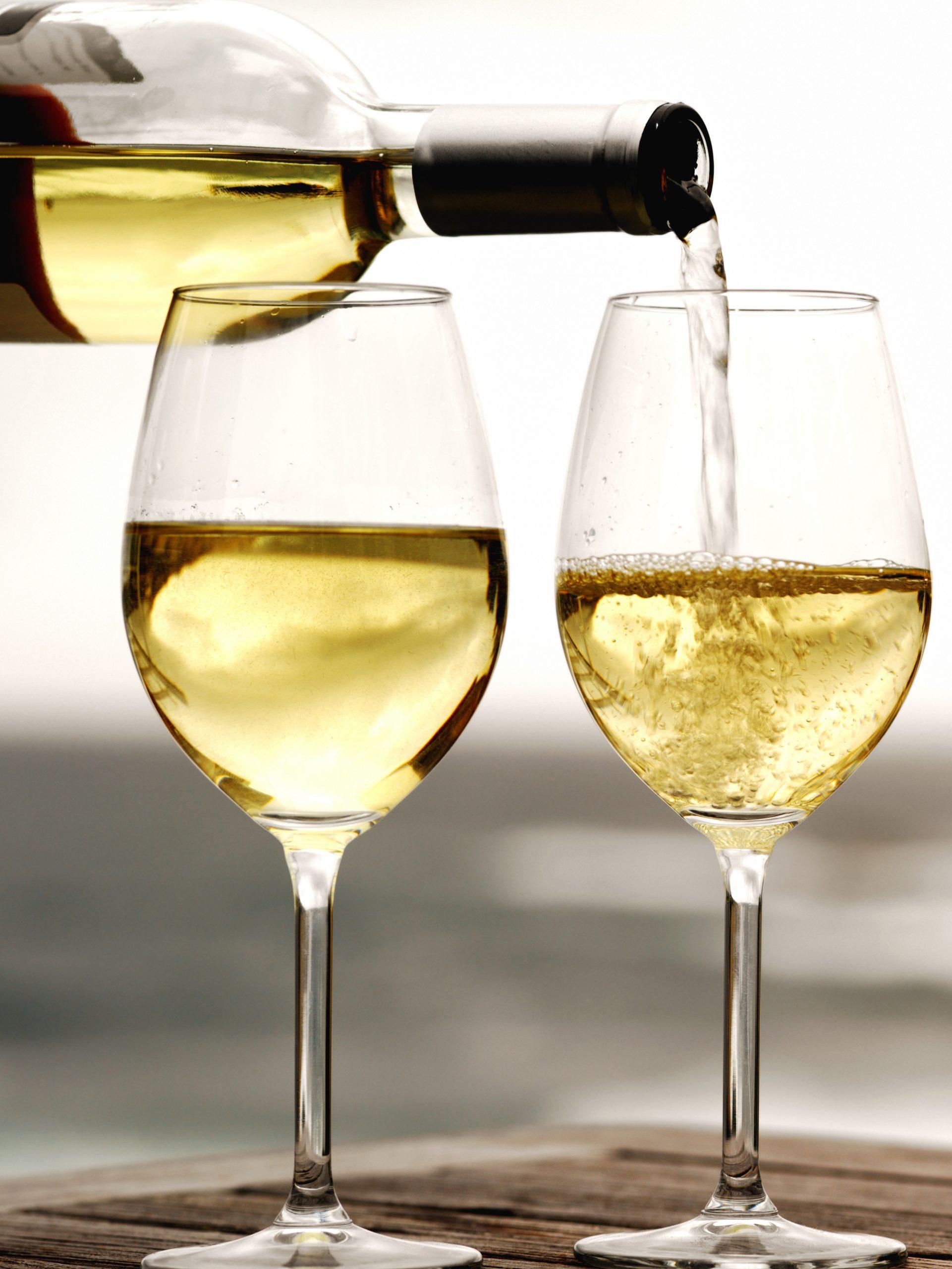 Van Ravenzwaaij White Wine Tasting