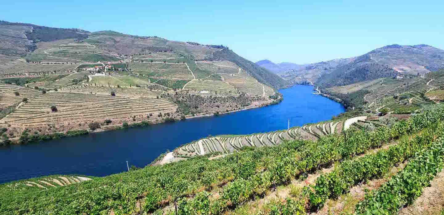 Quinta do Popa Douro vineyards