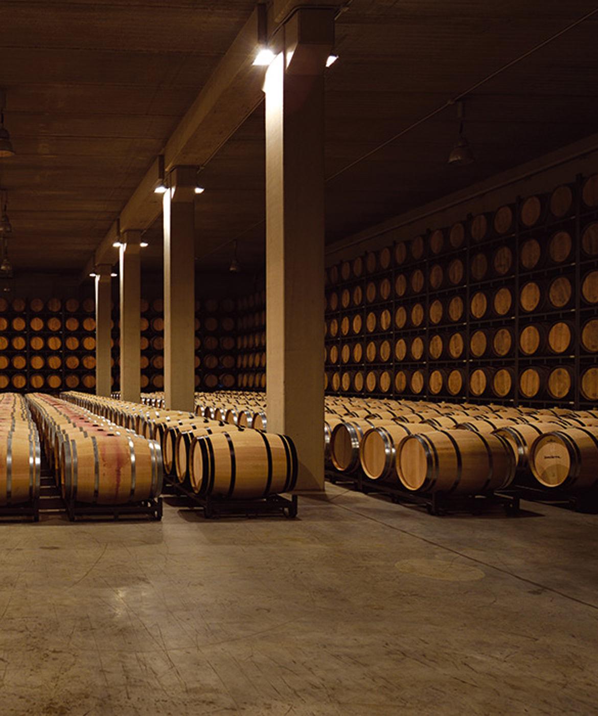 Bodega Sonsierra Cellar