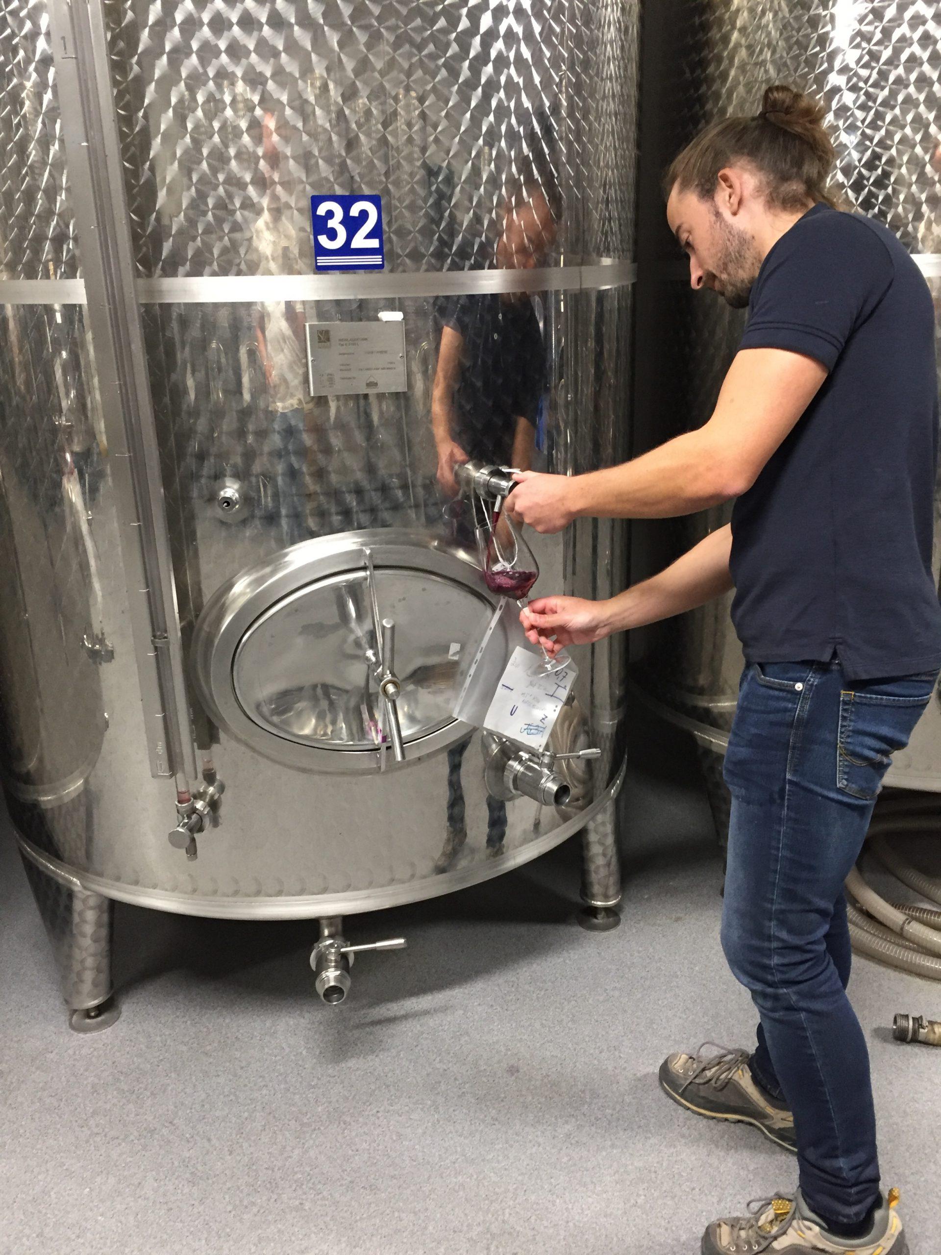 Weingut Mittelbach inox tasting