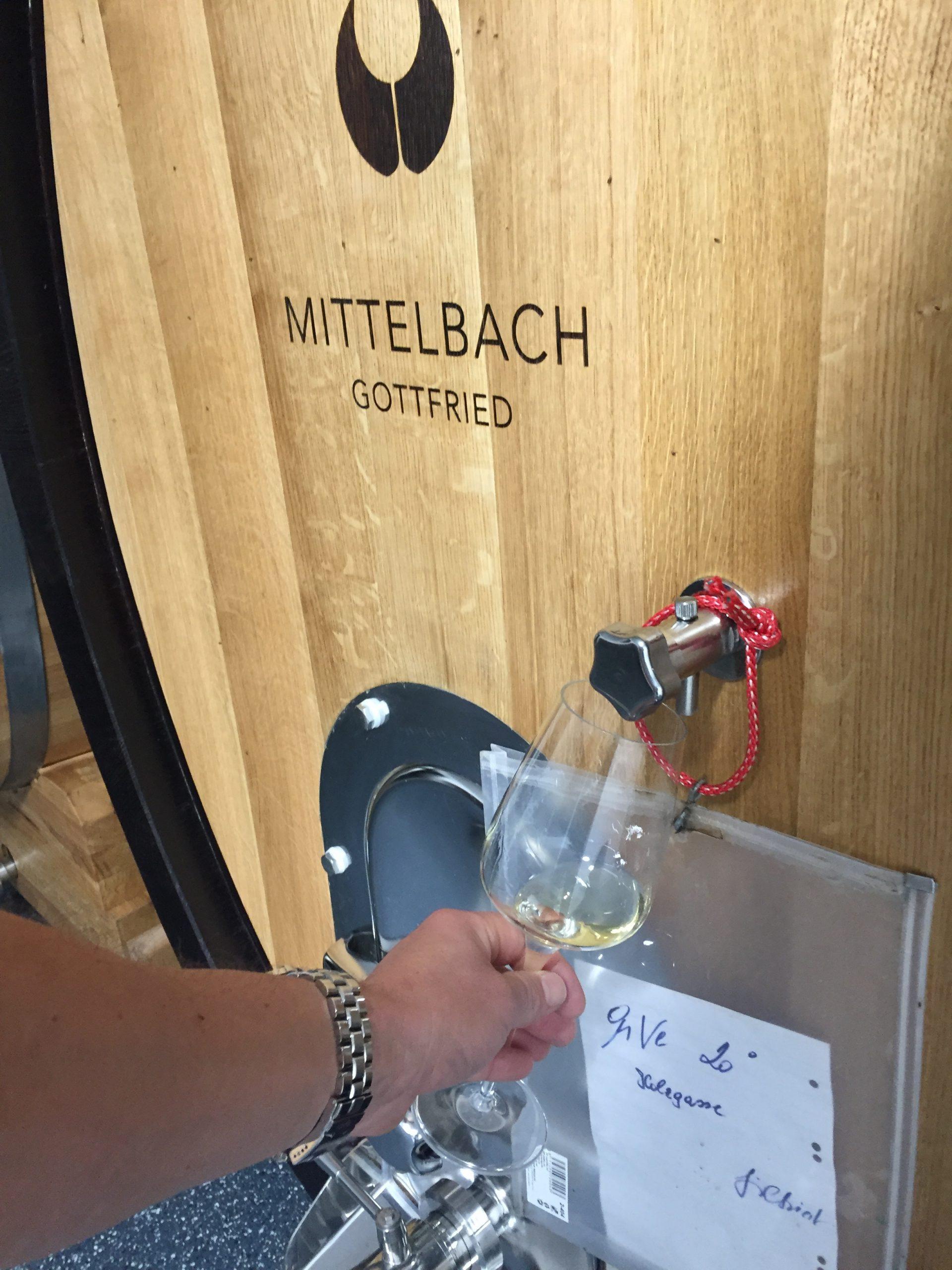 Weingut Mittelbach Oak Holzgasse