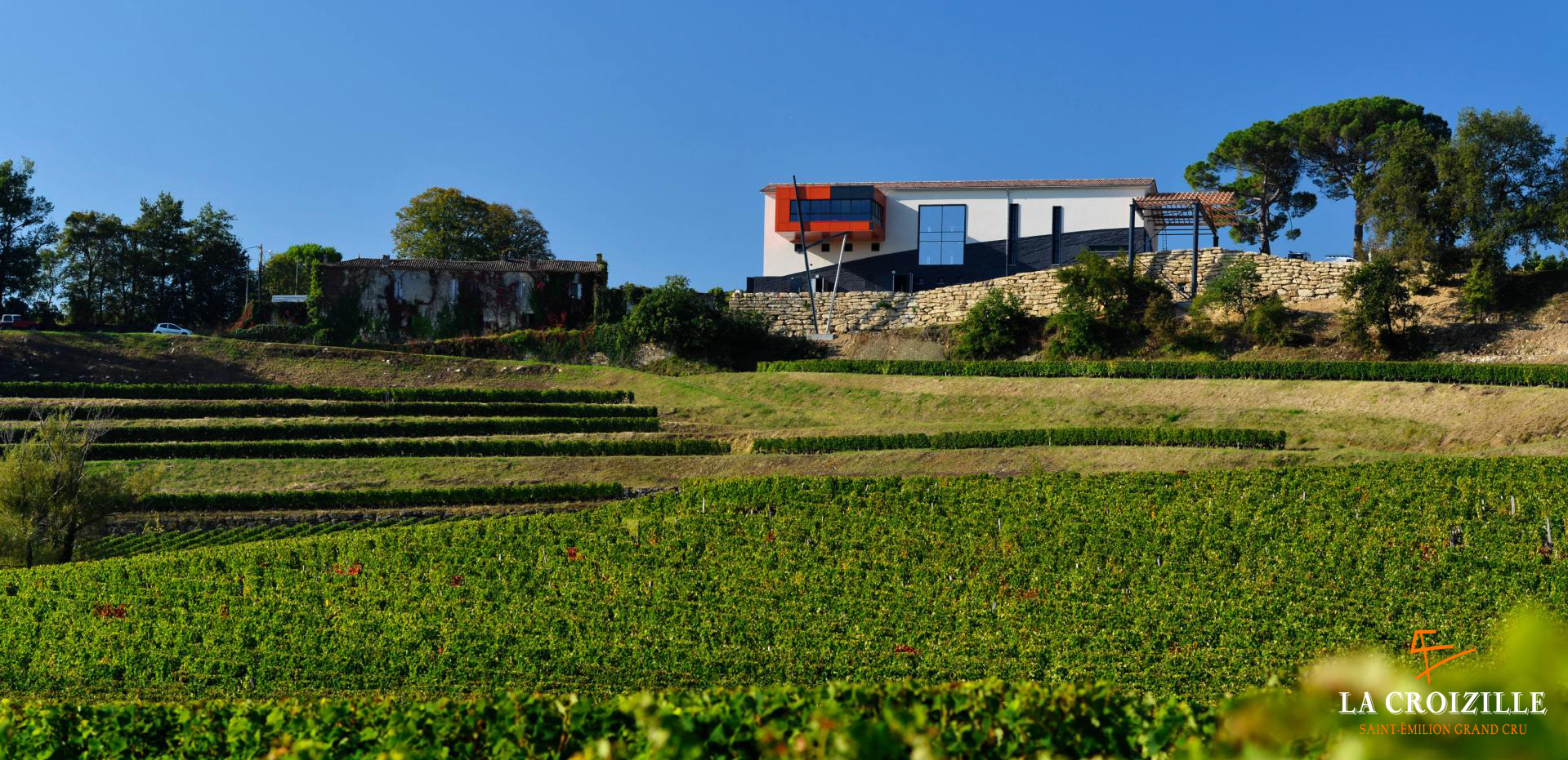 La Croizille St Emillion vineyard